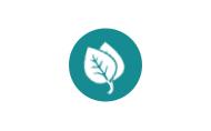 Противозачаточные таблетки Силуэт: состав и форма выпуска, механизм действия, достоинства и недостатки препарата, отзывы покупателей